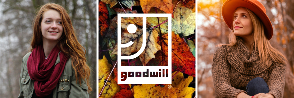 Goodwill finds for fall email header (2).png